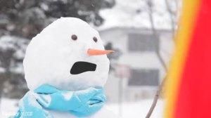 snowdaydisturbed